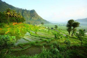 Vliegtijd Bali